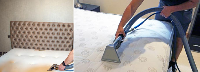 Healthy Mattress Cleaning Glen Forbes