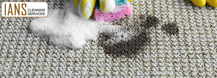 Remove Oil Stains From Carpet