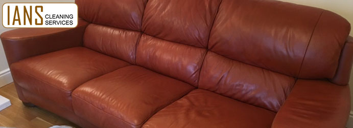 Leather Couch Cleaning Services