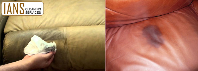 Leather Couch Stain Removal