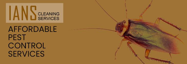 Affordable Pest Control Brisbane