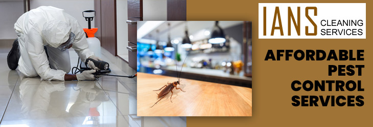 Affordable Pest Control Perth