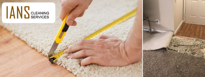Best Carpet Repair Services
