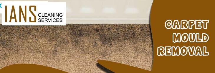 Carpet Mould Removal Parkside
