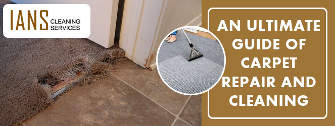 Carpet Repair and Cleaning