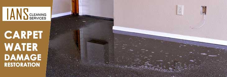 Carpet Water Damage Restoration Holt