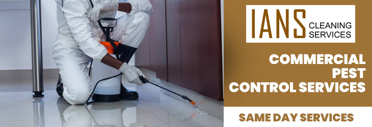 Commercial Pest Control Hobart