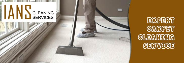Expert Carpet Cleaning Service Exeter