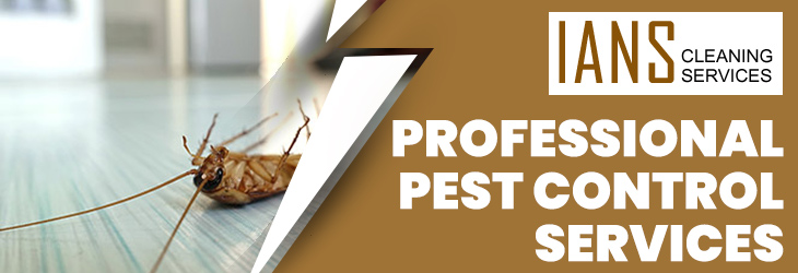 Professional Pest Control Canberra