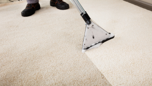 Carpet Sanitization & Anti-Allergic Treatments